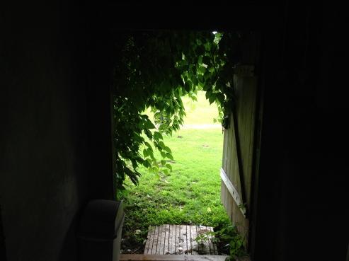 Doorway (smaller)